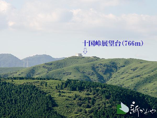 滝知山園地よるい十国峠を望む